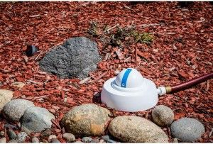 10 Best Gardening Gadgets To Buy For Summer- Droplet